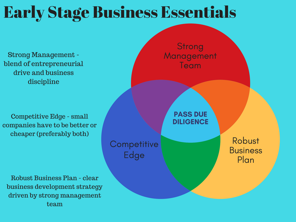 Early stage business essentials